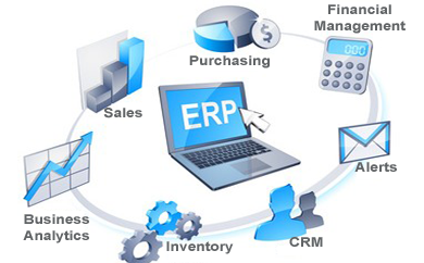 ERP Software Company in Noida